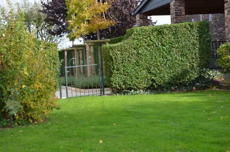 Entretien jardins li ge ga tan brixhe abattages for Entretien jardin 22